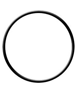 Pentek 151117 Viton O-Ring  seals