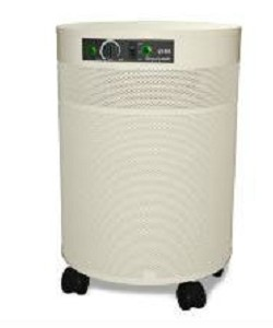 Airpura P600 Air Puifier with Photo-Catalytic Oxidation