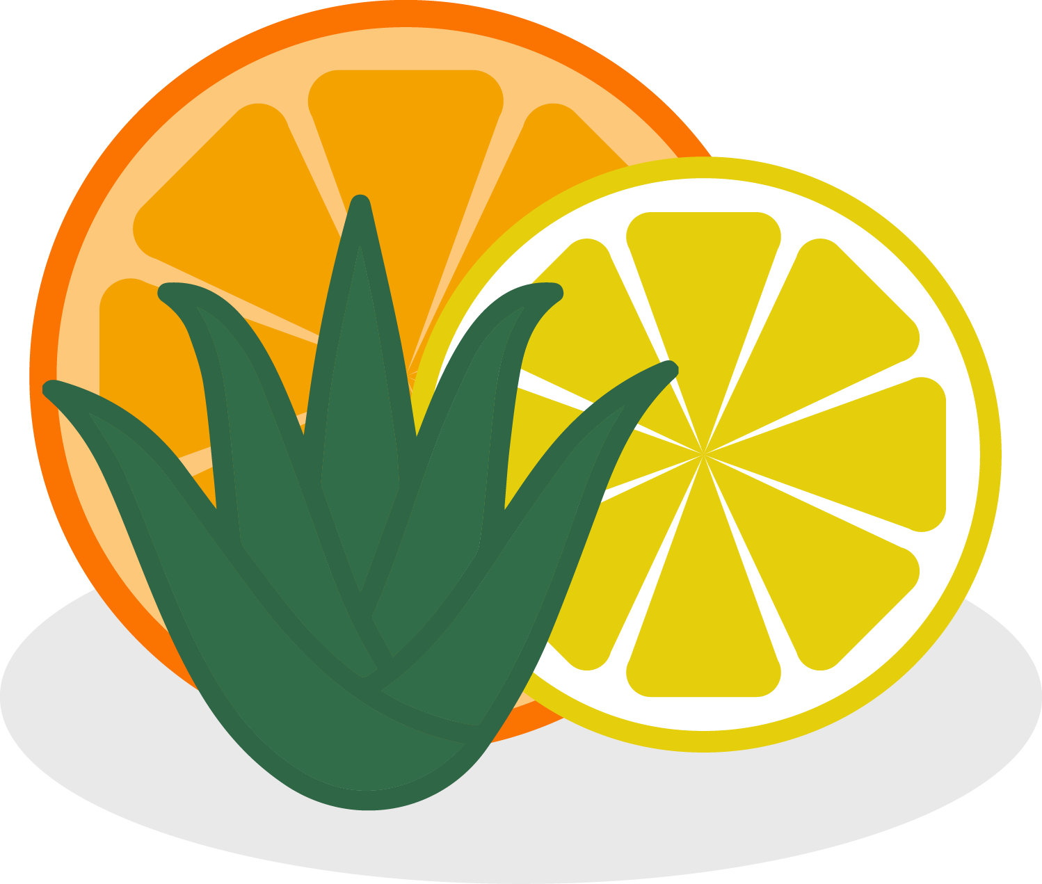 Citrus-and-aloe