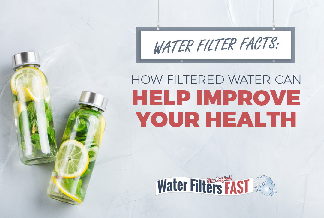 Water Filter Facts: How Filtered Water Can Help Improve Your Health