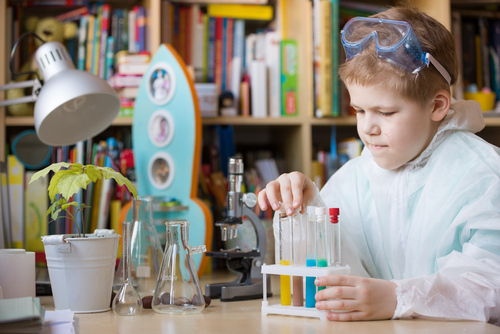 Fun Water Filtration & Pollution Science Experiments for Kids