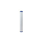 Everpure Costgaurd CG520 Water Filter - EV910825