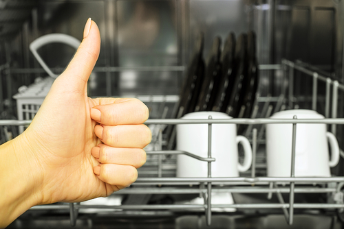 The Benefits of Having a Dishwasher Water Filter