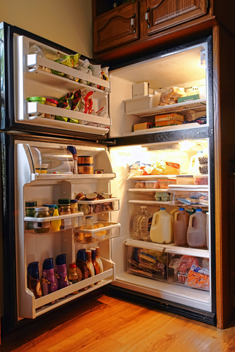 open-fridge