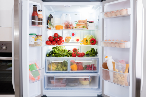 The Four Most Eco Friendly Refrigerators On The Market