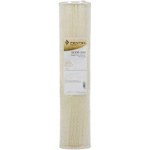 Pentek ECP50-20BB Sediment Filter