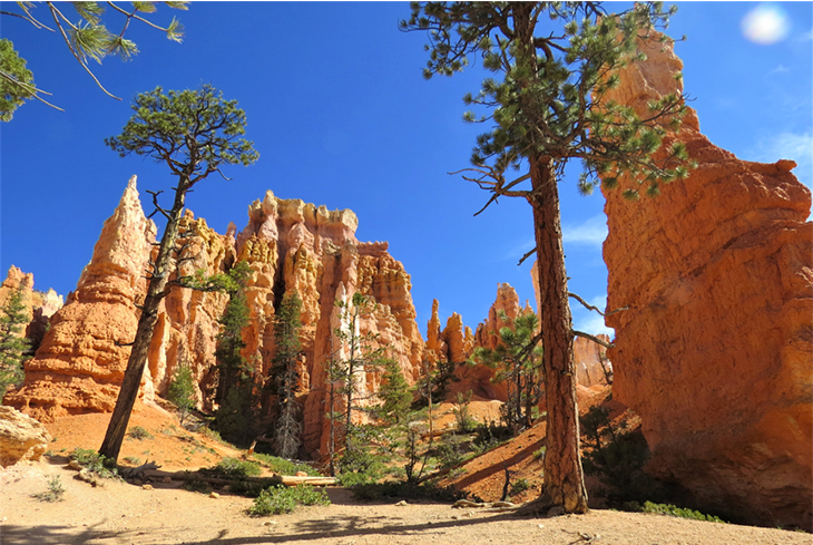 scenic-shot-bryce-canyon-national-park